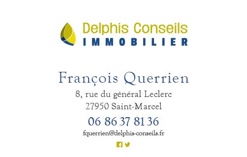 Pascal Ridel Infographiste Rouen carte de visite création de logo Delphis Conseils Immobilier