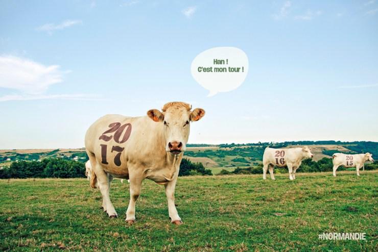 Infographiste Rouen Pascal Ridel Carte de voeux 2017 Les trois vaches