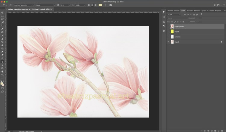 how to digitalize watercolor illustrations