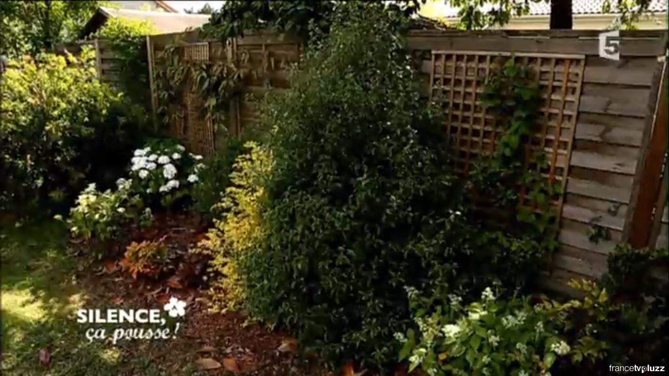 latest comment transformer une terrasse en jardin cacher une palissade avec des plantes duombre. Black Bedroom Furniture Sets. Home Design Ideas
