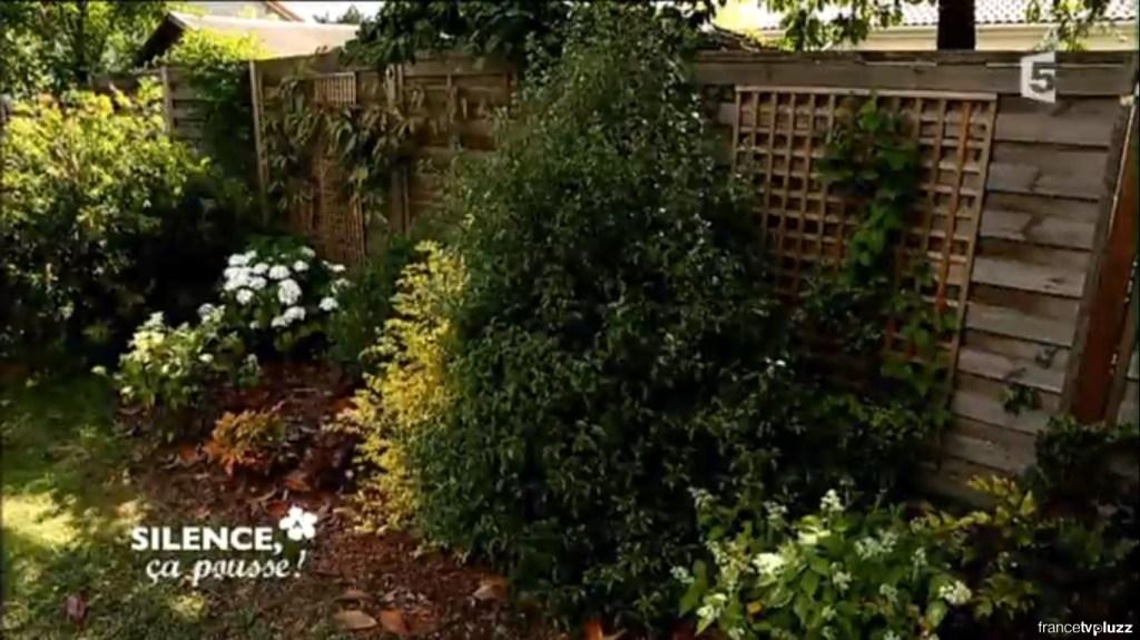 cacher une palissade avec des plantes d ombre pas de. Black Bedroom Furniture Sets. Home Design Ideas