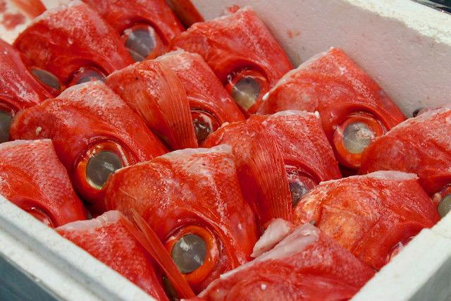 Cabezas de pescado mercado de Tsukiji Tokio