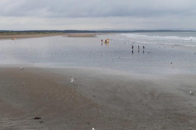 Excursiones desde Edimburgo Playa de Saint Andrews Escocia