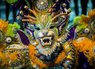 Carnaval 2019 ADN.
