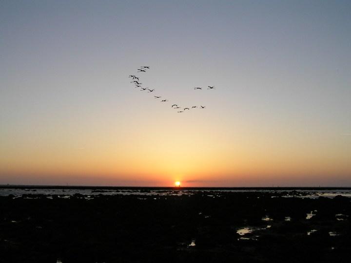Puesta de sol desde la playa de la Jara de Sanlúcar, frente al Corral del Merlín. | Foto: J. Manuel Vidal-Cordero