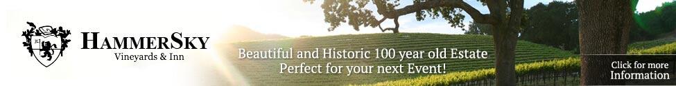 HammerSky Vineyards Banner Ad