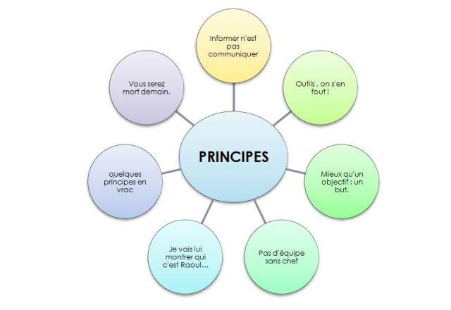 7 principes