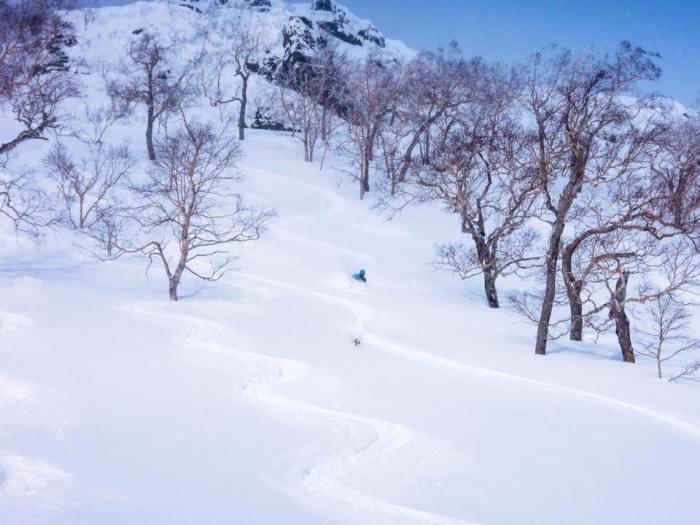 ski de randonnée au Japon hokkaido - voyage outdoor montagne ski