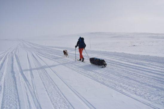 Voyage-laponie-finlande-ski-nordique-aventure - pulka