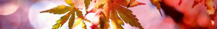 Coups de coeur de l'automne montagne sports outdoor blog on n'est pas que des collants