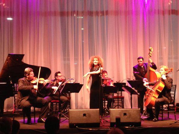 Evento Uma noite em Vienna