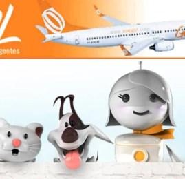 GOL lança serviço para transporte de animais na cabine em voos domésticos