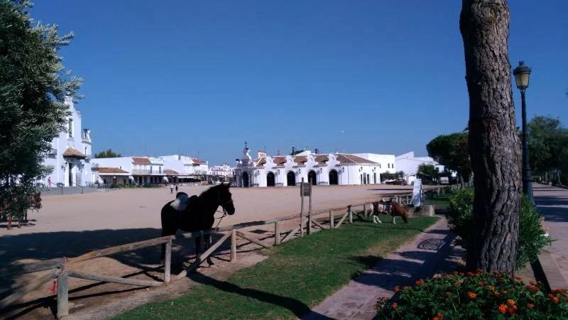 Cavalo na Andalusia