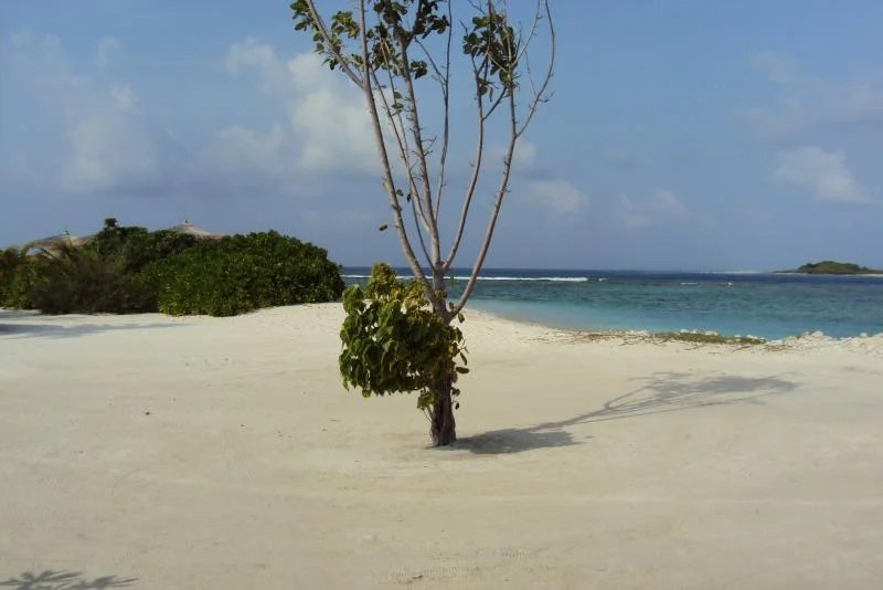 praia-maldivas
