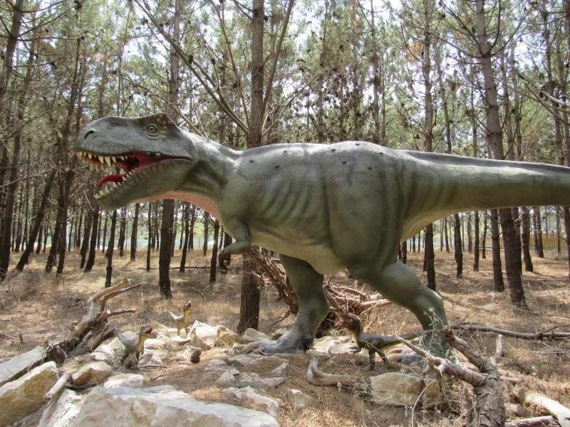 Visitar Dino Parque
