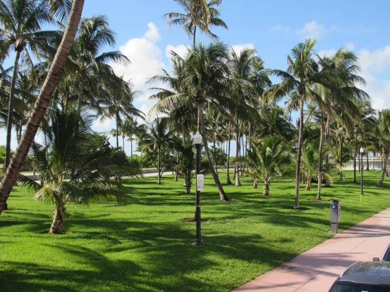 Visitar Lummus Park em Miami Beach