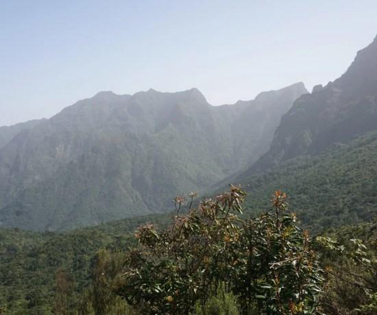 Parque Natural da Madeira.