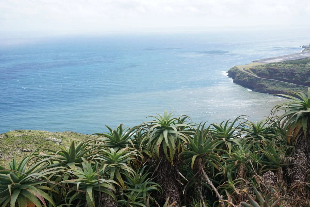Miradouro Pico do Facho em Machico Madeira.