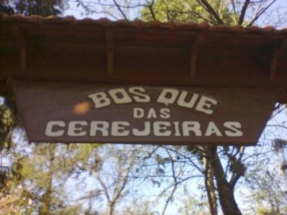 Parque do Carmo. Foto: Sueli dos Santos/ Passeios Baratos em SP
