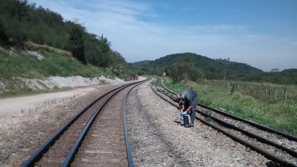 Estação Evangelista de Sousa