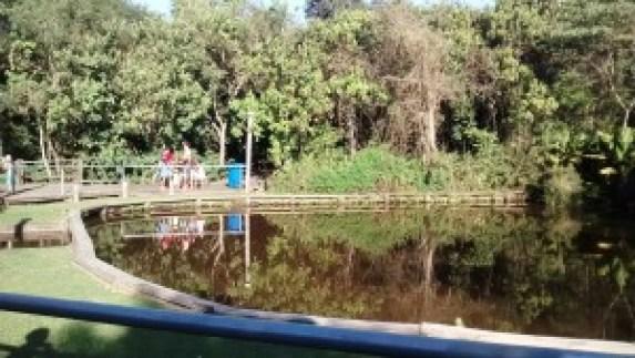 Há um pequeno lago para contemplação. Foto: Patrícia Ribeiro/ Passeios Baratos em SP