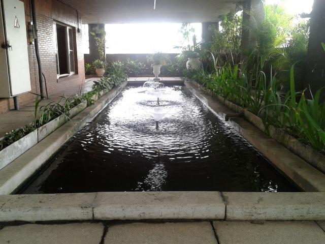 Lago de carpas completa o projeto paisagístico do jardim Foto: Patricia Ribeiro/Passeios Baratos em SP