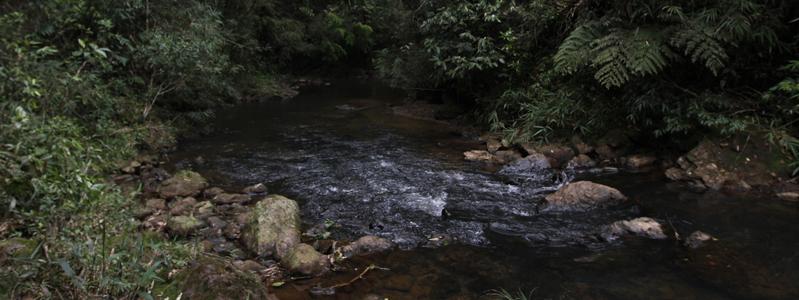Cachoeira Poço das Virgens Foto José Cordeiro/SPTuris