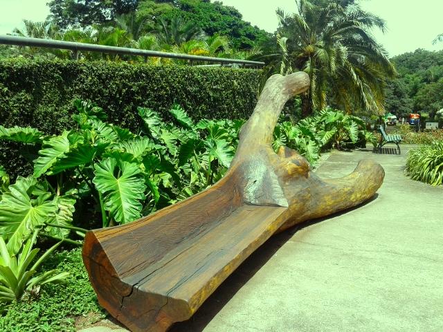 Conjunto paisagístico de Burle Marx Foto: Patrícia Ribeiro/Passeios Baratos em SP