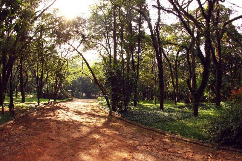 Parque do Piqueri - Caio Pimenta/SPTuris