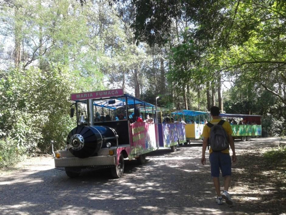 As crianças adoram o passeio de trem Foto: Patricia Ribeiro - Passeios Baratos em SP