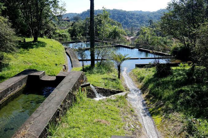 Parque das Nascentes Foto: Pedro PSA