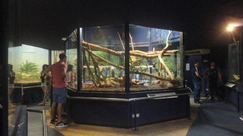 Dentro do Museu Biológico Foto Vilma Alcantara