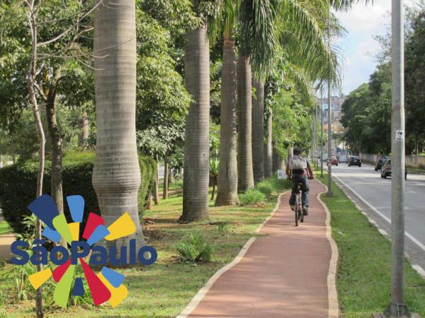 Ciclovia Av Bras Lema Foto Marcelo Olha