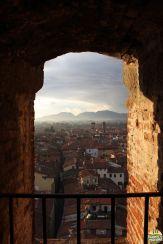 Lucca - torre Guinigi_16