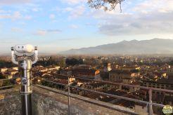 Lucca - torre Guinigi_19