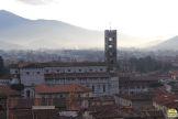 Lucca - torre Guinigi_42