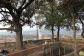 Lucca - torre Guinigi_47