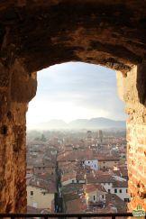 Lucca - torre Guinigi_9