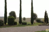 Valle D'Orcia_24
