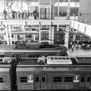 Complete a legenda: A Fantástica fábrica de.... by blogdodourado 1fotopordiadotrem, passengers,