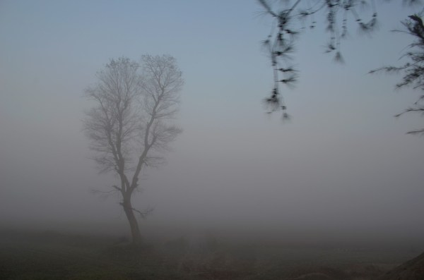 The overwhelming and intimidating fog was all around us... making every moment full of intrigue!