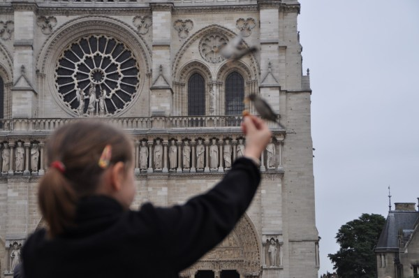 At first my eyes were focused on the Notre Dame, admiring its architecture... and the bird or the girl did not matter...