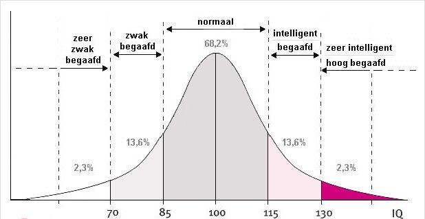 Intelligentie IQ test