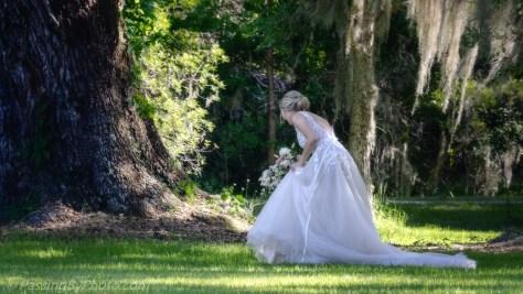 Bride Under an Oak Tree