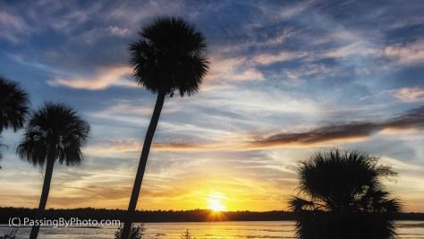 Sunset Wildlife Drive