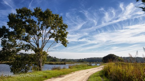 Wispy Clouds Over Donnelley WMA