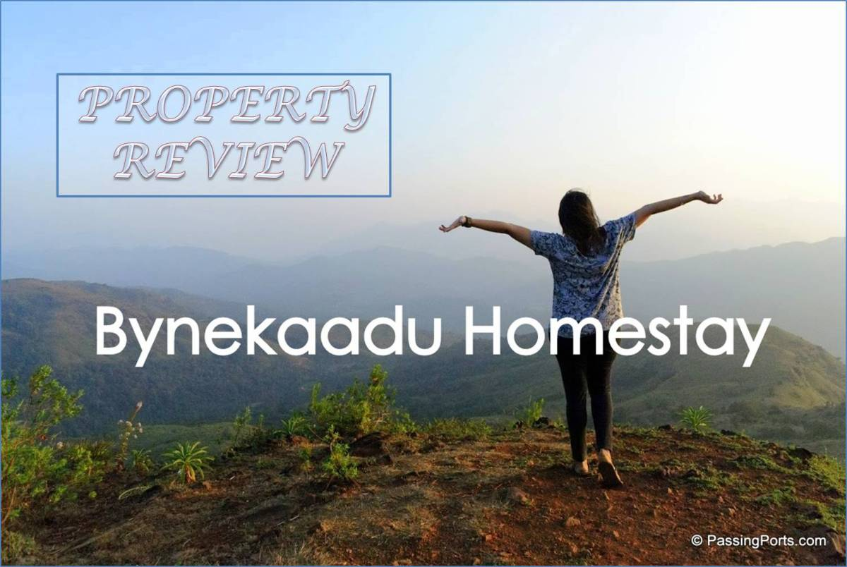Homestay Review: ByneKaadu in Kalasa, Chikmagalur