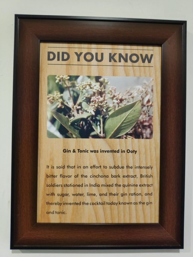 Origin of Gin and Tonic is from Ooty, India
