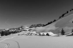 Chalets de l'alpage de Doran