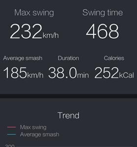 usense badminton données